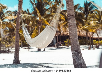 A white hammock between two palm trees on the white sand beach