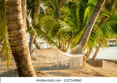 White hammock hanging in palmtrees on tropical beach