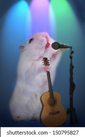 white hamster as music star singing with microphone and holding guitar on the stage