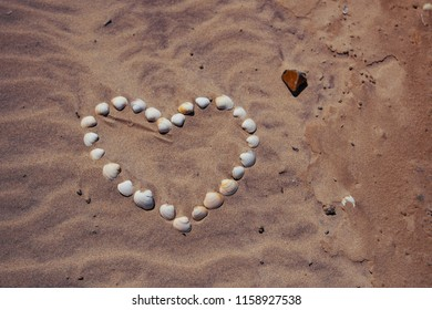 White Heart symbol out of shell in the sand shoes the love for Denmark. Danish Beach, Lønstrup in North Jutland in Denmark, Skagerrak, North Sea