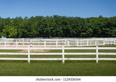 White horse corrals