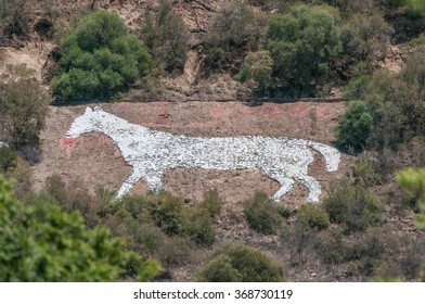 The White Horse on the east side of Naval Hill in Bloemfontein was built from rocks painted white, by British troops stationed in the area during the Anglo-Boer war, as a direction marker for troops