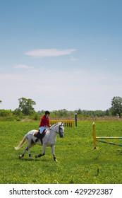 White horse on a green meadow with a rider