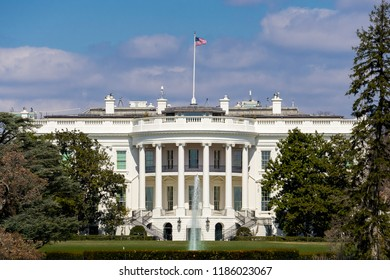 The White House with blue sky background and green trees foreground in summer at Washington DC