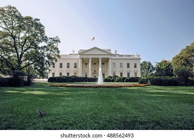 The White House and green lawn with squirrel on it  Perfect background for a text