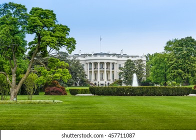 The White House and the green park under a blue sky - Washington DC United States