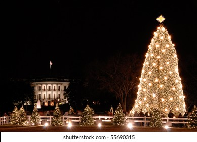 White House and the National Christmas Tree in Washington DC