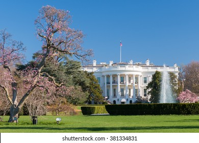 The White House in spring flowers