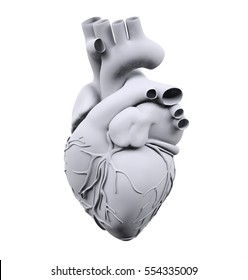 White human heart isolated on white background, 3d illustration