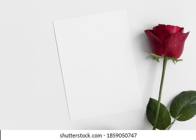 White invitation card mockup with a red rose. 5x7 ratio, similar to A6, A5.