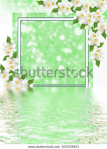 White jasmine. The branch delicate spring flowers. Natural background.