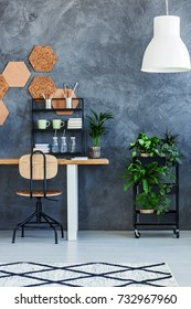 White lamp above plant on shelf next to table with accessories in dark interior with cork on wall