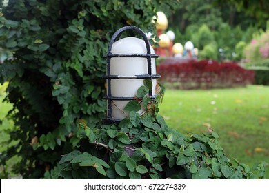 White lamp with green creeper in the garden.