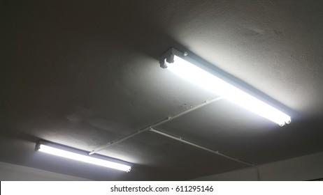 White light from Fluorescent light tube on the wall or Neon tube light.