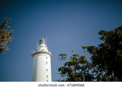 White lighthouse in the middle of the nature between trees.