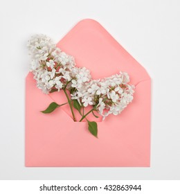 White lilac flowers  in a pink envelope on a white background