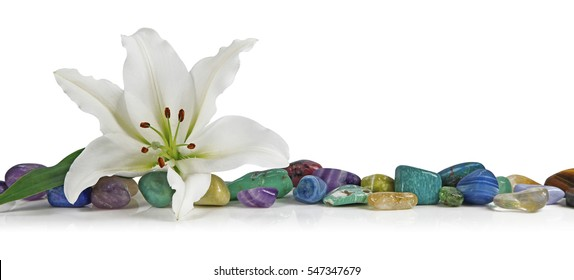 White Lily and healing Crystal - a solitary lily place on top of a row of multicolored tumbled healing stones on a white background