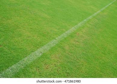 white line on green grass of football yard stadium