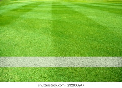 white lines of a playing field