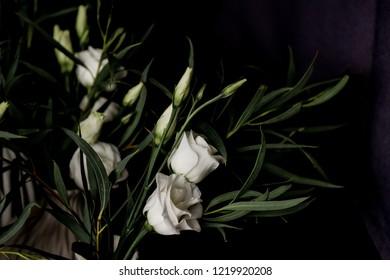 White lisianthus flower bouquet on black studio background