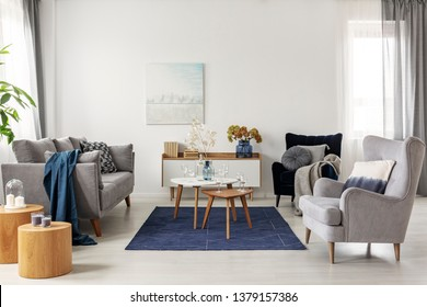 White living room with comfortable armchair, coffee tables and grey scandinavian couch