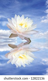 White lotus and its inverted image in water on blue sky background
