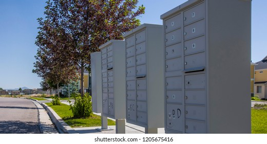 White mailboxes on a sunny landscaped sidewalk