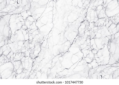 Silestone Engineered Stone Countertops likewise Versatile Restoration co likewise 47147127328885184 further Surface 2 0 Cool Grey A06gzsur Cgy M0r in addition 424. on marble kitchen floors