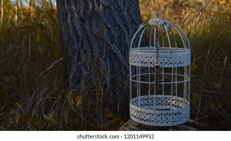 A white metal decorative cylindrical cage with a retro vintage jewelry necklace on the background of dry autumn grass and a tree trunk in the warm sunset light