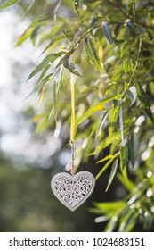 white metal and wooden hearts hanging in nature, celebration love