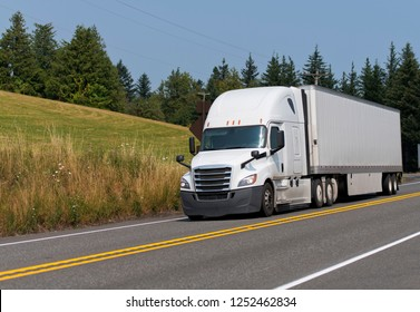 White modern bonnet professional technological big rig semi truck transporting dry van semi trailer with commercial cargo on the road with trees and summer meadow background