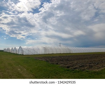 White modern plastic green houses against blue cloudy sky background in early spring.