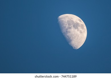 White moon on a blue background. soft and select focus .