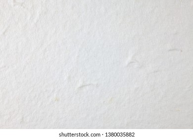 White Mulberry paper background.