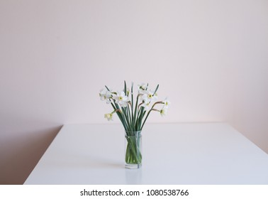 White narcissi on the table