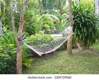 White net bed hanging with trees in the garden for relaxation time