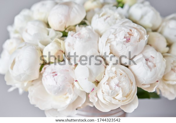 White Odile peonies in a metal vase. Beautiful peony flower for catalog or online store. Floral shop concept . Beautiful fresh cut bouquet. Flowers delivery. Copy space