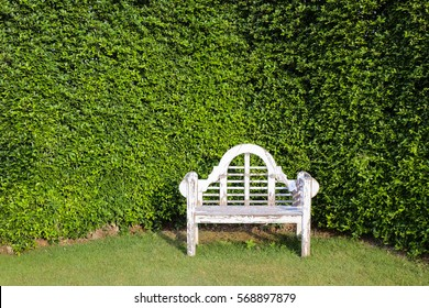 white old vintage wooden bench with tree wall background : in horizontal