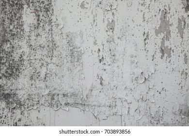 White old wall Textures