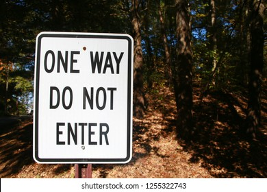 White One Way Do Not Enter Sign with Black Lettering in Front of Thick Foliage of Woods in a Clear Sunny Day in Burke, Virginia