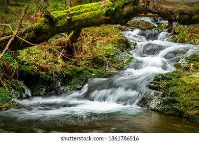 White Opava stream, waterfalls, level and beam, with fallen tree, Fairytaile Nature, Jeseniky, Hruby Jesenik, Czech Republic - Shutterstock ID 1861786516