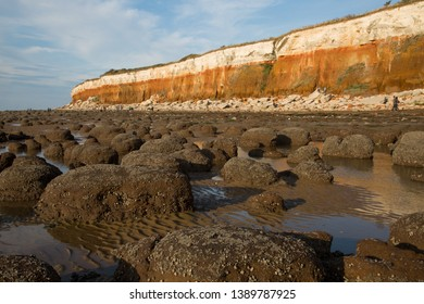 White and orange coastal cliffs at Hunstanton, Norfolk, UK with clay nodules in the foreground