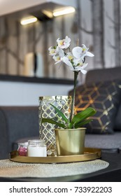White orchid flower on the table in modern interior design small room