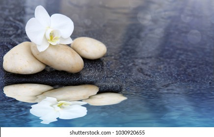 White orchid flower and spa stone reflected in the water.