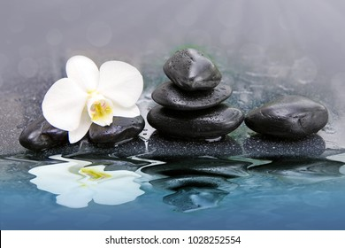 White orchid flowers reflected in the water. Spa background.