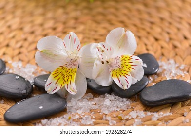 White orchid on black stones with pile of salt on woven mat