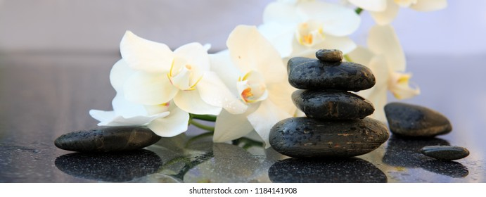 White orchids flowers and spa stones . Spa background.