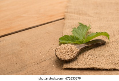 White organic sesame seed on spoon with sesame green leaf