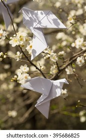 White origami dove birds hanging on blooming spring plum tree