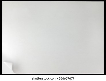 White page curl background, black isolated horizontal copy space closeup